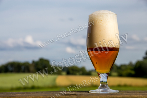 Glass of beer;