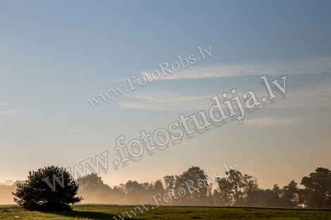 Latvian landscape with mist;