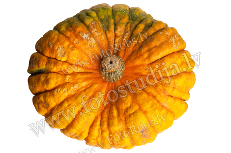 Colourful pumpkin isolated on white background